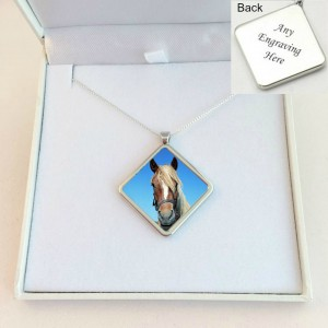 pet-loss-necklace-with-photo-sterling-silver-chain-661-p